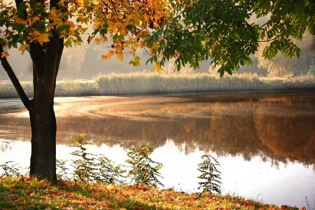 muskoka: Lake