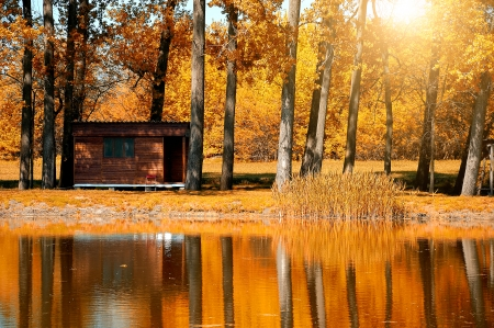 lake dwelling: Woodhouse