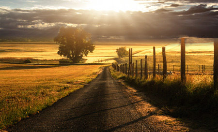 beautiful scenery: Country road