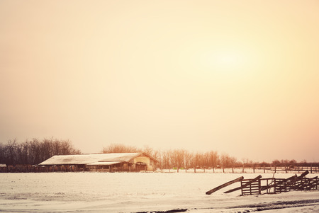 Winter farm photo
