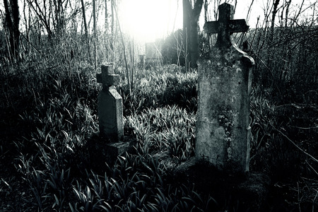 graveyard: Graveyard Stock Photo