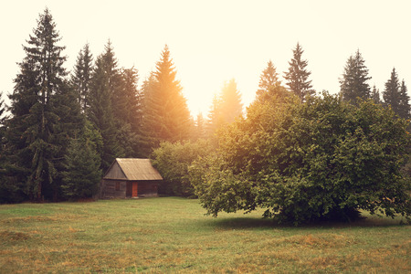 Cabin on the field photo