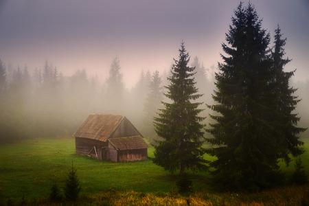 Old farmhouse on the transylvanian field photo