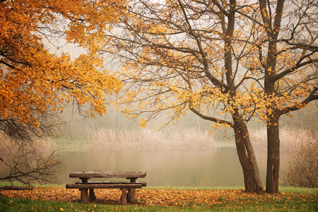 Bench autum park and lake photo
