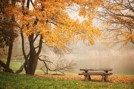 Bench autum park and lake