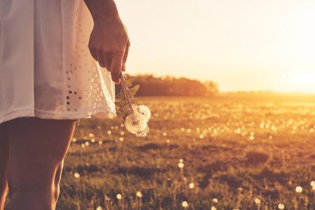Dandelion on woman hand