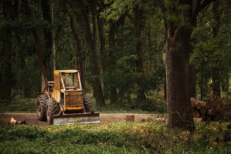 deforestation: Old tractor on the forest deforestation work