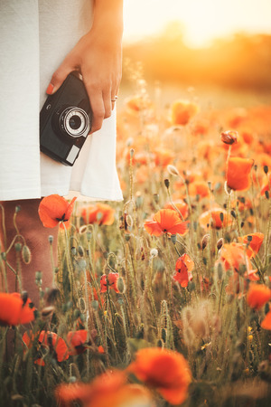 Vintage camera in woman hand on poppy field photo