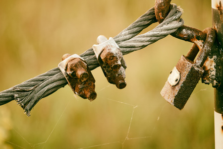 steel wire: Padlock on steel wire Stock Photo