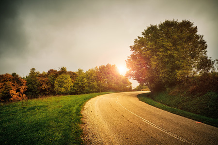 triplet: autumn road