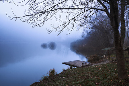fog forest: Pier on winter foggy lake