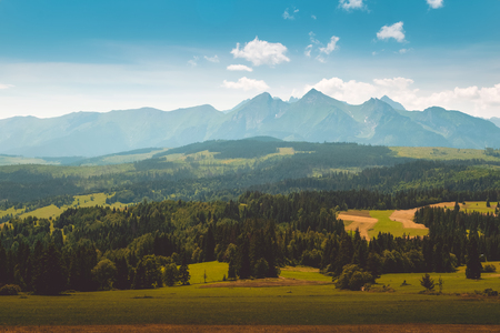 tatra: Panorama of Tatra Mountains in summer time