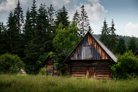 abandoned farmhouse abandoned farmhouse: Old log cabin in the forest