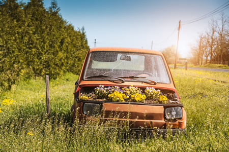 Old vehicle in the garden with flowerpot
