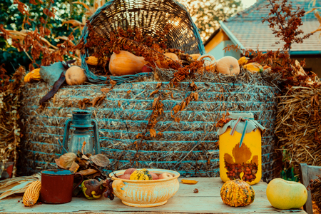 Iron lantern and autumn decoration on the table in a garden Banque d'images