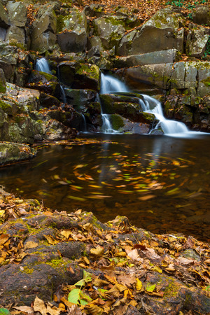Flowing stream and waterfall in autumn forest