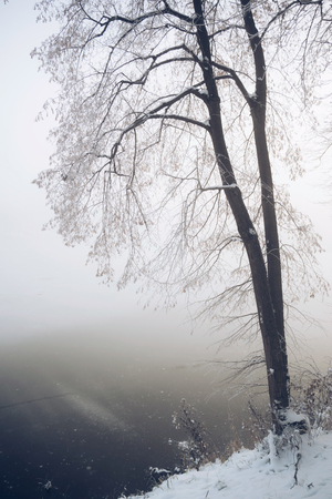 Winter frozen lake in fog
