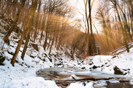 Flowing stream in winter forest with sunbeams