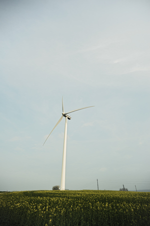 Windmill on the field, renewable energy Stockfoto