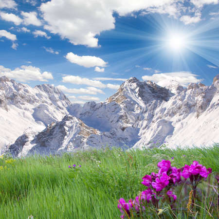 Countryside with snowy mountains and green meadow