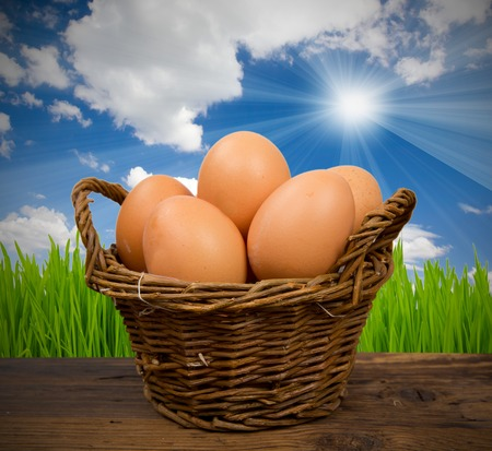 Photo of basket with eggs with grass and sky photo