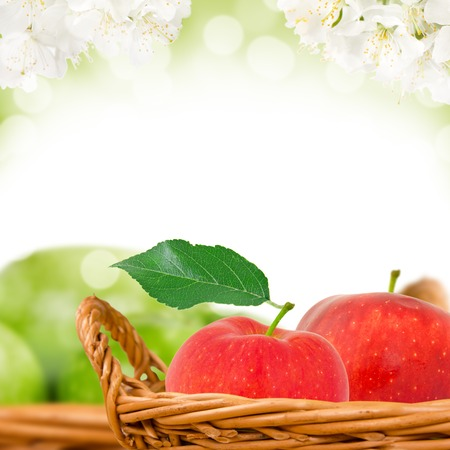 Photo of red and green apples in basket with apple blossom background photo