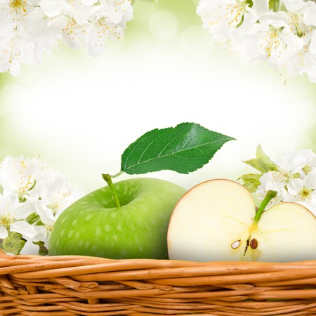 green apples in basket with apple blossom background photo