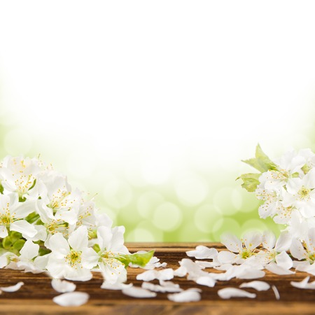 Blossoms on wooden desk abstract background Stock Photo