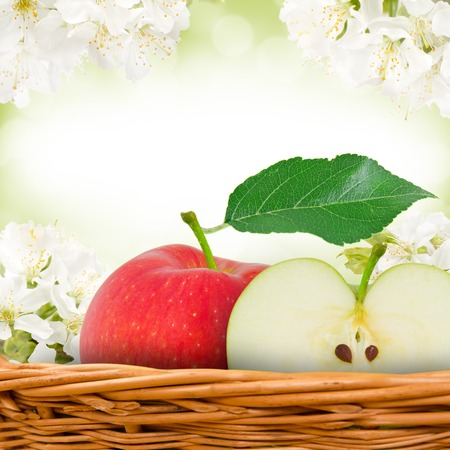 Photo of red apples in basket with apple blossom background photo