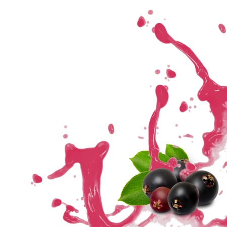 Photo of elderberry with leaf and splash isolated on white Stok Fotoğraf