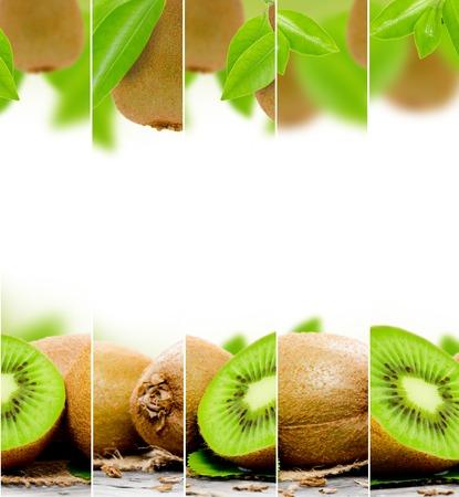 raum weiss: abstract kiwi mix mit wei�em Platz f�r Text Lizenzfreie Bilder
