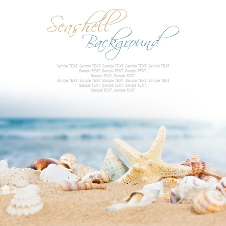 Photo of seashells with sand, ocean and white space for text