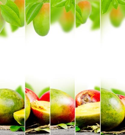 raum weiss: Foto von abstrakten mango mix mit wei�em Platz f�r Text Lizenzfreie Bilder