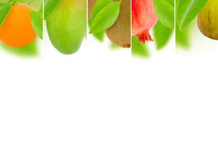 Photo of abstract fruit mix with white space for text photo