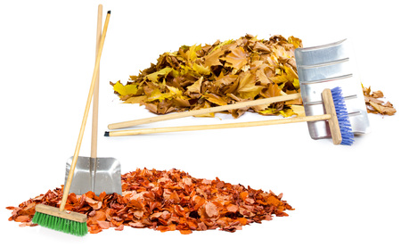 gold shovel: Photo of autumn leaf heaps with cleaning tools isolated on white