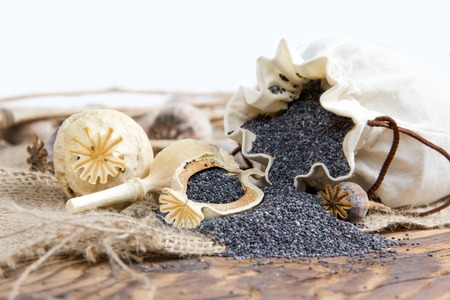 poppy seeds: Photo of bag full of poppy seeds on burlap with white space Stock Photo