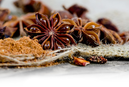 Macro photo of star anise on burlap with white space; low depth of focus
