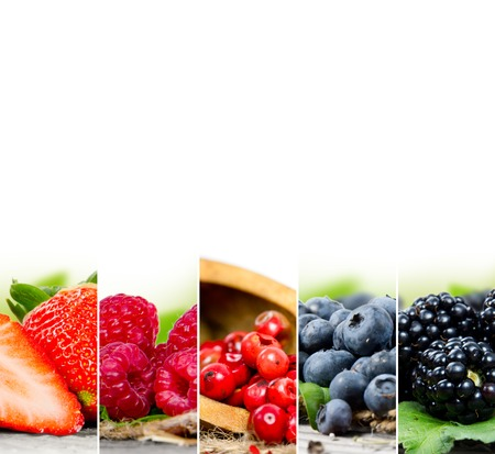 Photo of colorful berry mix with white space for text Stock Photo - 46728572