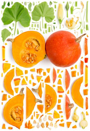 Large collection of orange pumpkin vegetable pieces, slices and leaves isolated on white background. Top view. Seamless abstract pattern.