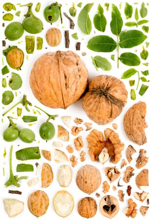 Large collection of walnut pieces, slices and leaves isolated on white background. Top view. Seamless abstract pattern.