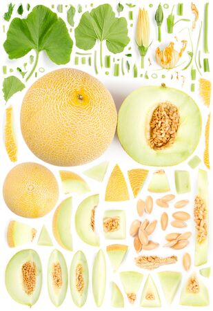 Large collection of cantaloupe melon fruit pieces, slices and leaves isolated on white background. Top view. Seamless abstract pattern.