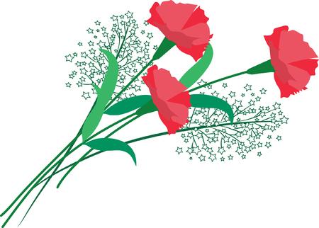 Red carnation flower Vettoriali
