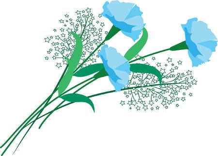 blue carnation flower