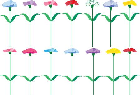 colorful carnation flower Vettoriali