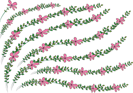 Pink flowers with leaves on white background