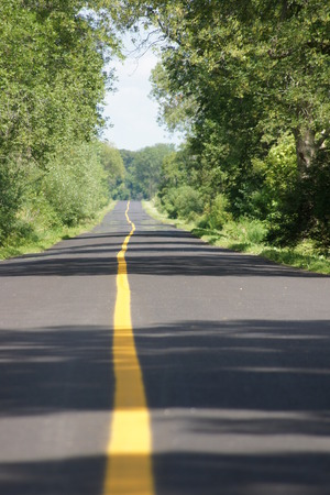 yellow line: Long road with yellow line in middle with trees on each side shadowing the road
