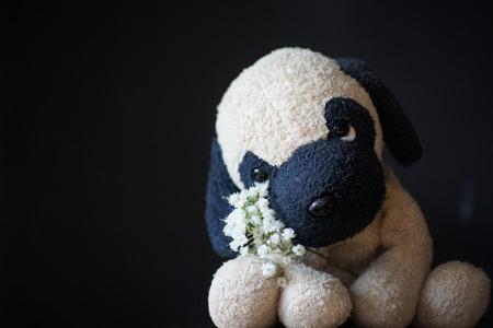 occhi tristi: Stuffed puppy dog with sad eyes, black background. Archivio Fotografico