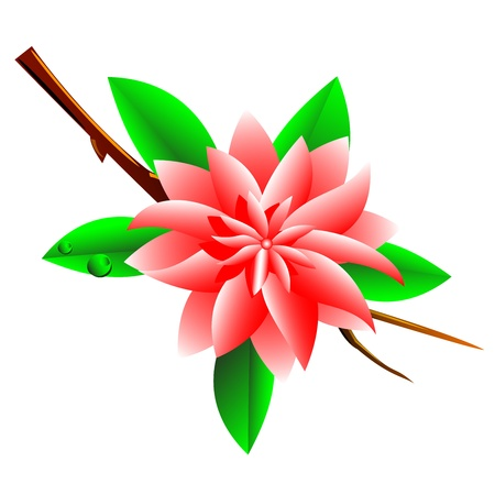 A pink flower on a branch with leaves and drops of dew