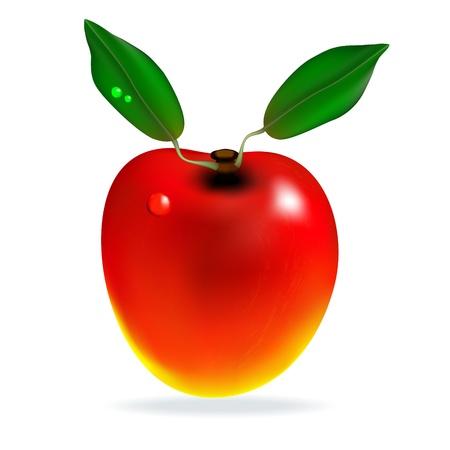Red Mango mit Bl�ttern auf wei�em Hintergrund