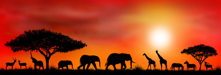 Silhouettes of wild animals of the African savannah.
